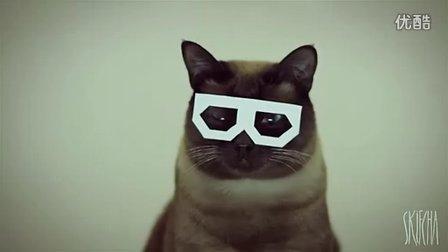 【时髦眼镜猫抓狂连拍】第5秒吓一跳!