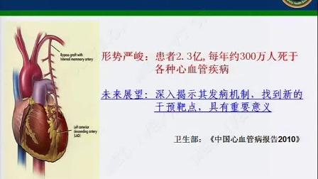 杨吉春:EP2-FAM3A信号轴在血管再狭窄中的作用