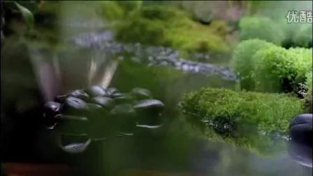 文华东方品牌电影「喜悦时刻」2012最新版本