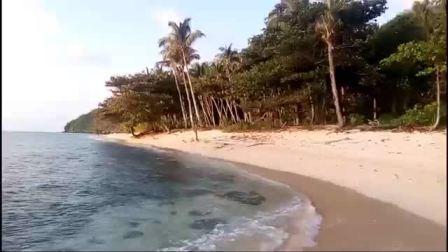 在无人小岛养海龟 Pulau Dua