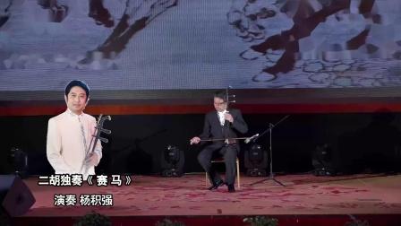 二胡独奏《赛马》演奏 知名二胡演奏家 杨积强
