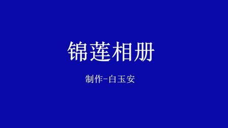 锦莲相册  制作-白玉安