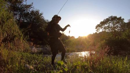 山溪小鱼也是挺好玩的,打到点就狠咬(马口/微物/亮片/小蜜蜂/天空之蓝/CQ BFS)