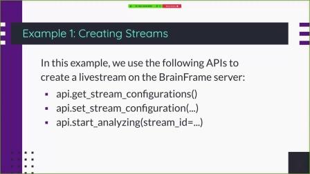 如何进行BrainFrame REST API开发_培训演示-1
