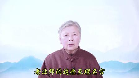 沐法悟心(第7集)圣德难思 佛恩难报