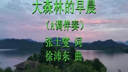 《大森林的早晨》A调伴奏 远征的歌 2020.8.9.