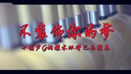 双管巴乌 不装饰你的梦 - 小葫芦民乐双管巴乌 尹贵辉 演奏作品 葫芦丝 巴乌 小葫芦民乐