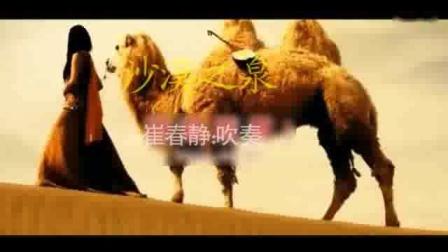 《沙漠之泉》葫芦丝演奏:崔春静(复赛曲目).