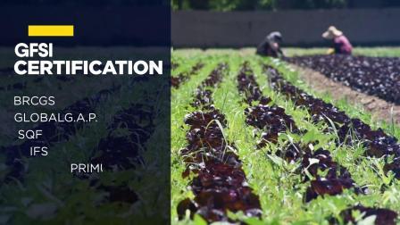 启迈QIMA WQS:管理您的食品供应链