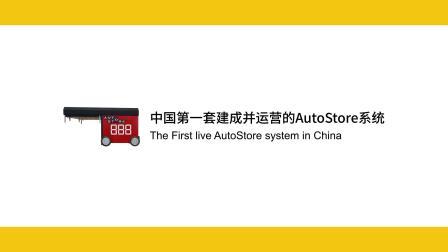 中国赫莱特AutoStore系统
