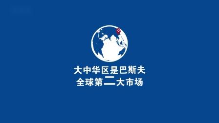 巴斯夫大中华区年度报告(2020)摘要