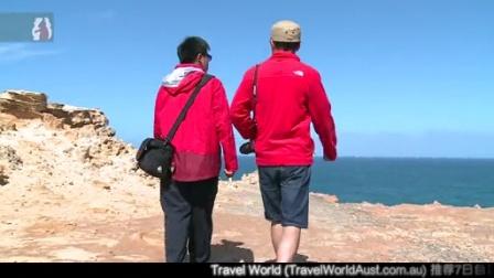 《环澳四万里》第十集:木化石没来,白菜却走了