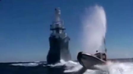 日本再次捕杀头鲸鱼其中包括怀孕母鲸