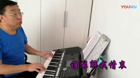 《一帘幽梦》电子琴演奏:陈杰(2018.2.2)