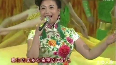张也-在希望的田野上(央视版)