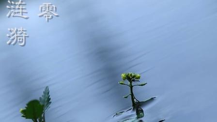 《三行情诗》流水潺潺 寄思于情