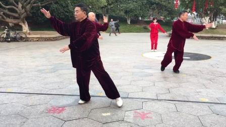 杨乃景,杨乃呈,倪尚岳,蔡秋密,林日涛。等集体晨练42式太极拳