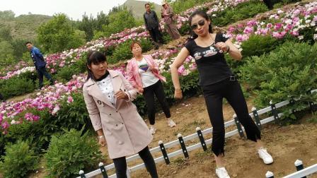 牡丹园大跳广场舞