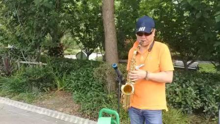萨克斯-绒花(大华公园现场版)麟大叔吹奏。