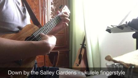 Down by the Salley Gardens - ukulele fingerstyle