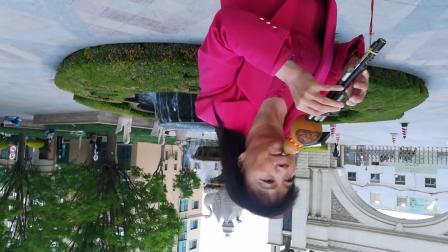 兰州阿楠葫芦丝月光下的凤尾竹。