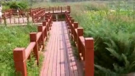 美丽的邱县(剪影)【9】:河北视频1