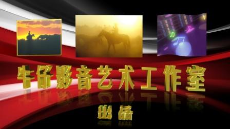 20171021深圳市第14届中老年歌手大赛-决赛-ZN03赵淑娟-视频