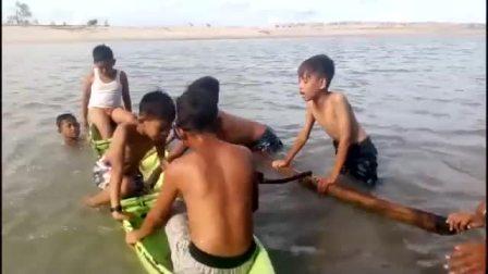 印度尼西亚的孩子自己去探险 Pertualang