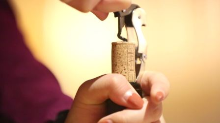 Farnese酒庄酒会   Interprocom蒂维妮