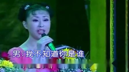 为了谁-祖海、佟铁鑫ktv 伴唱版