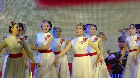 舞蹈《飘扬吧红旗》演出 金陵老年大学艺术团