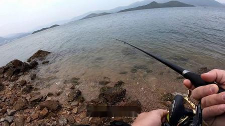 矶钓 | 2020.02.01 全游动练习@初尝滩钓的乐趣_35cm黑鯛