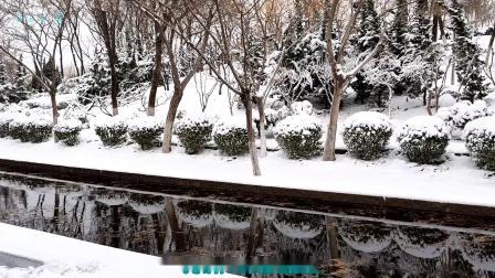 瑞雪迎春《伤心的雪花》美丽的童话世界(珍藏版)
