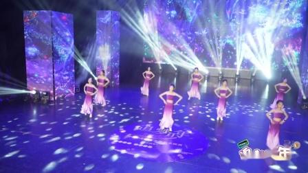 """江西省""""追梦少年""""少儿舞蹈大赛《碧波孔雀》----红星舞蹈艺术学校"""