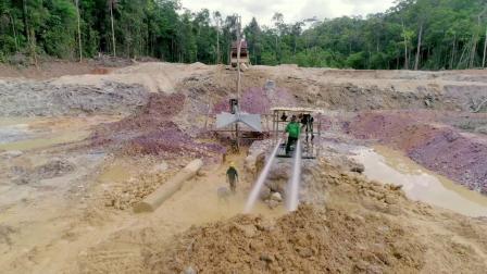 开云集团:法属圭亚那矿区植树项目(英语)
