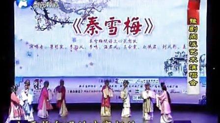 豫剧《秦雪梅 观文》音配像 再传弟子(戏痴小郭上传)