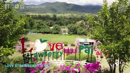 PAI, THAILAND // AERIAL DJI DRONE VIDEO