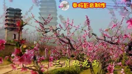 美丽故乡土门峪--桃花盛开的地方(上集)