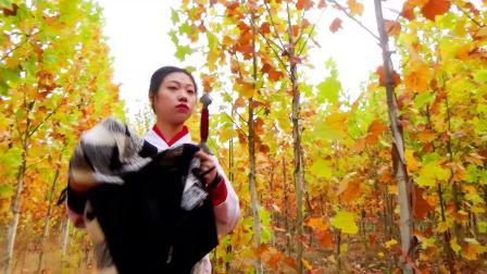 A011B《女侠蒙难纪》1080P古装宣传片