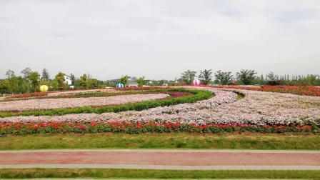 游苏州太湖园博园