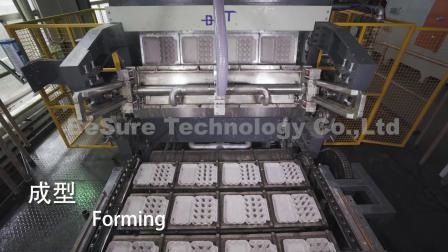 必硕科技 纸浆模塑设备 全自动转鼓式蛋盒生产线