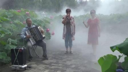 《2020 东营植物园荷园》:歌曲《芙蓉花》《荷花吟》