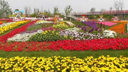 好友相聚上海浦江郊野公园