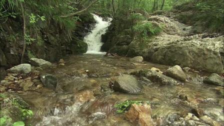 山河风水峡谷山峰(10m)LED大屏背景墙视频-全十古云210707