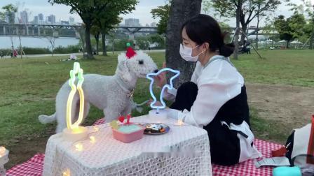 【SoriNotSorry!】日常的Sori (VLOG,MacBook,德培的生日派对,汉江夜景)