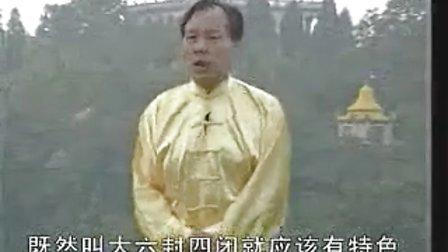 张志俊精解陈氏新架一路实用技击(合并版)
