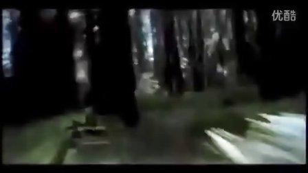 Autonomous Visionbased Flight through a Forest