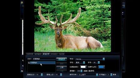怎样制作电子相册之【图片编辑】——艾奇KTV视频电子相册教程