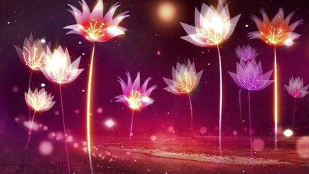 LED背景~ 11樱花草
