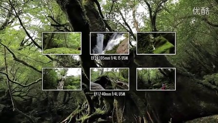 Canon 6D-Deep Green